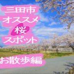 オススメ!三田市で桜を愛でるならこのスポット~お散歩編~