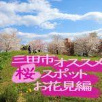 オススメ!穴場!三田市で桜を愛でるならこのスポット~お花見編~