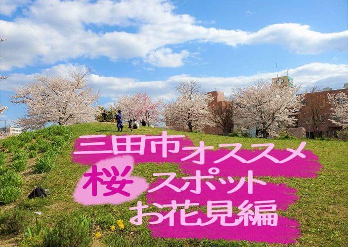 三田市ふれあい広場 お花見